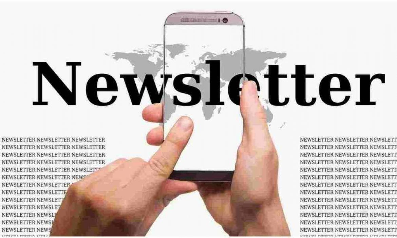 Newsletter: Definition, Purpose & Procedure